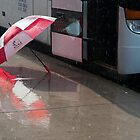 Umbrella At The Bus In Front Of The Art Gallery by Gary Chapple