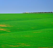 Empty landscape.  by Oleg Zaslavsky