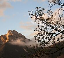 Mountains in Austria  by AJDreams