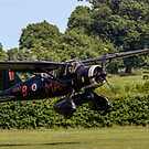 Westland Lysander IIIa V9367 G-AZWT in over the hedge by Colin Smedley