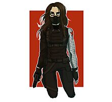 the winter soldier Photographic Print