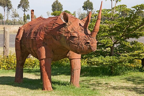 Rusty Rhino by phil decocco
