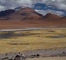 Atacama Landscape II by DianaC