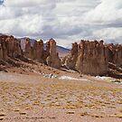 Tara Salt Flat II by DianaC