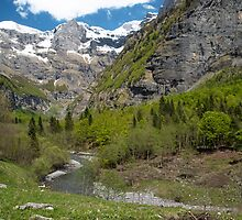 Fer a Cheval Nature Reserve French Alps by Nick Jenkins