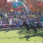 Sir Knight Charges in Jousting Battle at Medieval Fayre by JimmyChi
