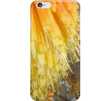 Bee at the Bottom iPhone Case/Skin