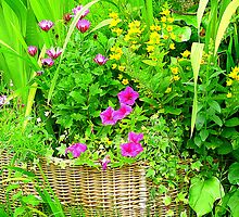 A Basket Of Blooms by Fara