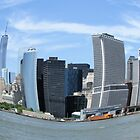 Fish Eye Lower Manhattan by joan warburton