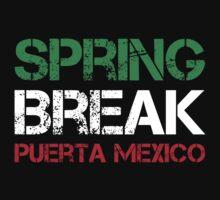 22 jump street - jonah hill - spring break puerto mexico by printandroll