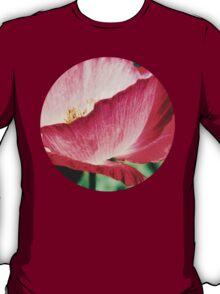 Red Poppy in Sunlight T-Shirt