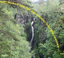 Corrieshalloch Gorge by Sandy Sutherland