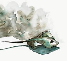 Stingray by Shantelle Labrie