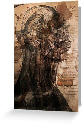 Anatomy by DawnOrigins