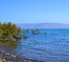 The Sea of Galilee by KhanasWeb