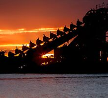 Sunset on the Wrecks - Moreton Island Qld Australia by Beth  Wode