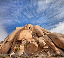 Joshua Tree Rocks by Dave Hare