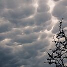 Ominous Clouds by jayant