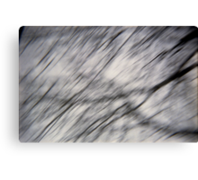 Blurry Tree Branches Canvas Print