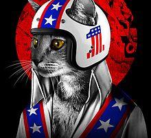 Evel Catnievel by JoeConde
