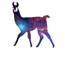 Space Llama Photographic Print