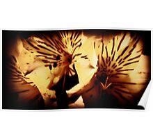 Tiger Lillies Poster