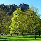 Edinburgh  by cate murray