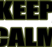 KEEP CALM AND SOAR Sticker