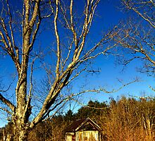 The Old Farmstead Outhouse by Nazareth