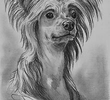 Chinese Crested Dog by Kokko Marianne