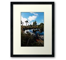 Sunny day on the button grass fields Framed Print
