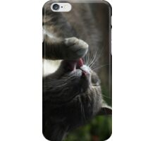 Grooming cat iPhone Case/Skin