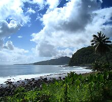 Samoan Coastline by davidandmandy