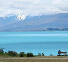 Lake Pukaki For One by davidandmandy
