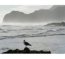Piha Beach In New Zealand Photographic Print
