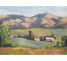 Hillside Farm Photographic Print