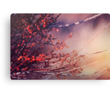 Fruitful Branching Canvas Print
