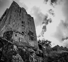Blarney Castle by Stuart Howard