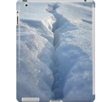 Split Open & Melt iPad Case/Skin
