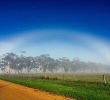 Fogbow by Phil Thomson IPA