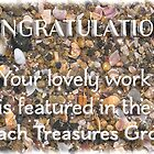 Proposed feature banner - Beach Treasures by Celeste Mookherjee