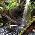 Meunna, Tasmania. Waterfall. by Esther's Art and Photography