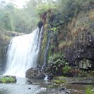 Guide falls, Tasmania. by Esther's Art and Photography