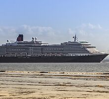 Queen Victoria from Crosby Beach by Paul Madden