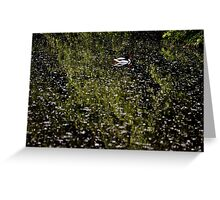 Wetlands - Martin Mere -  A View Greeting Card