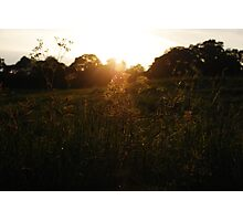 Sunset over the field Photographic Print