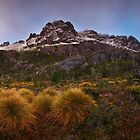 Pre Dawn on the Cradle Massif - Cradle N.P. Tasmania by Mark Shean