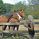 Laura With Two Of The Horses At Her Farm by Jane Neill-Hancock