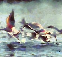 Flight Series II:  Flamingo Flight by Bunny Clarke