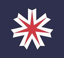 Flag of Hokkaido Prefecture  by abbeyz71